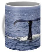 Humpback Whale Swimming Coffee Mug