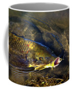 Hungry Carp Coffee Mug