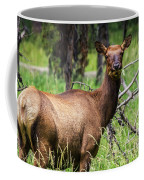 Hungry Elk Coffee Mug