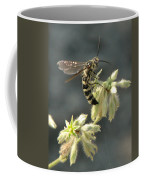 Hunter Wasp Coffee Mug