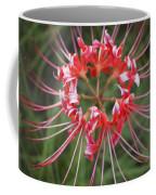 Hurricane Lily Coffee Mug
