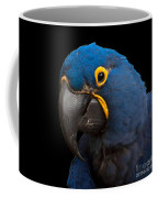 Hyacinth 363 On Black Square Coffee Mug