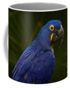 Hyacinth 446 Coffee Mug