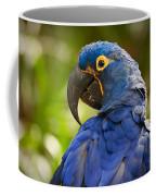 Hyacinth 458 Coffee Mug