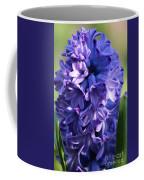 Hyacinth Highlights Coffee Mug