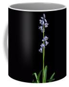 Hyancinth Coffee Mug