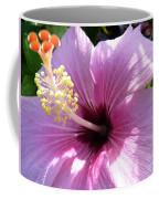 Hybiscus Smile Coffee Mug
