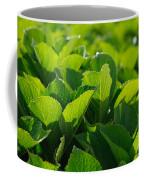 Hydrangea Foliage Coffee Mug by Gaspar Avila