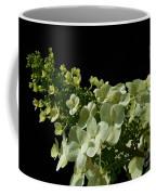 Hydrangea Formal Study Landscape Coffee Mug