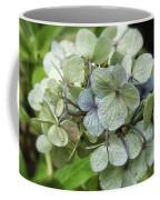 Hydrangea  In Purple And Pale Yellow Coffee Mug