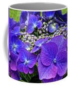 Hydrangea Plant Coffee Mug