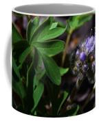 Hydrophyllum Capitatum Coffee Mug
