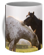 I Will Scratch You And You Will Scratch Me Coffee Mug