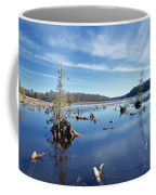 Iago Springs 9500 Coffee Mug