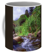 Maui Hawaii Iao Valley State Park Coffee Mug