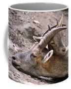 Ibex Mother And Son Coffee Mug