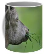 Ibex Coffee Mug