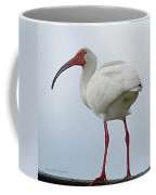 Ibis In The Morning Coffee Mug