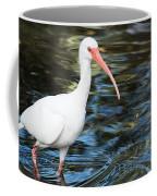 Ibis In The Swamp Coffee Mug