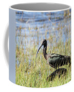 Ibis Looking Around Coffee Mug