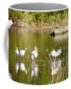 Ibis Pool Party Coffee Mug