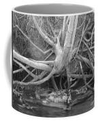 Twisted Roots  Coffee Mug