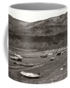 Ice Fields Coffee Mug