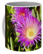 Ice Plant Blossom Coffee Mug by Kelley King