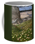 Ice Plants On Moss Beach Coffee Mug