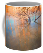 Ice Reflections 2 Coffee Mug
