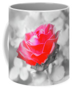 Iced Rose Coffee Mug