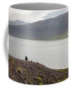 Iceland 12 Coffee Mug