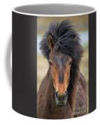 Icelandic Equine Beauty.. Coffee Mug