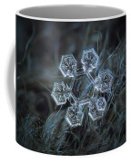 Icy Jewel Coffee Mug by Alexey Kljatov