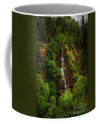 Idaho Springs Waterfall Coffee Mug
