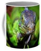 Iguana Stare Coffee Mug