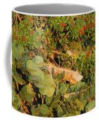 Iguanas Coffee Mug