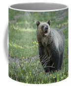 I'll Only Say This Once Coffee Mug by Sandra Bronstein