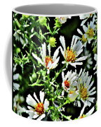 Illinois Wildflowers 3 Coffee Mug