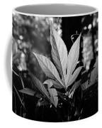 Illuminated Leaf, Black And White Coffee Mug