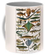 Illustration Of Ocean Fish Coffee Mug
