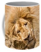 Im Sleeping Coffee Mug