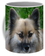 Im Swedish Coffee Mug