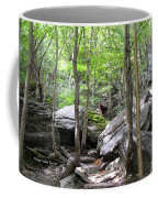 Image Included In Queen The Novel - Rocks At Smugglers Notch Coffee Mug