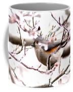 Img_0001 - Tufted Titmouse Coffee Mug