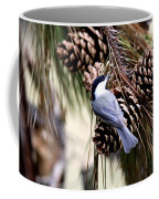 Img_0215-022 - Carolina Chickadee Coffee Mug