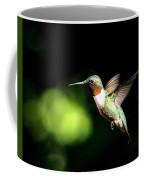 Img_0284-006 - Ruby-throated Hummingbird Coffee Mug