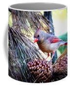 Img_0311 - Northern Cardinal Coffee Mug