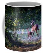 Img_0461-020 - White-tail Deer Coffee Mug