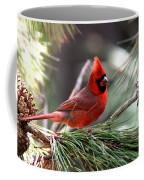 Img_0565-004 - Northern Cardinal Coffee Mug